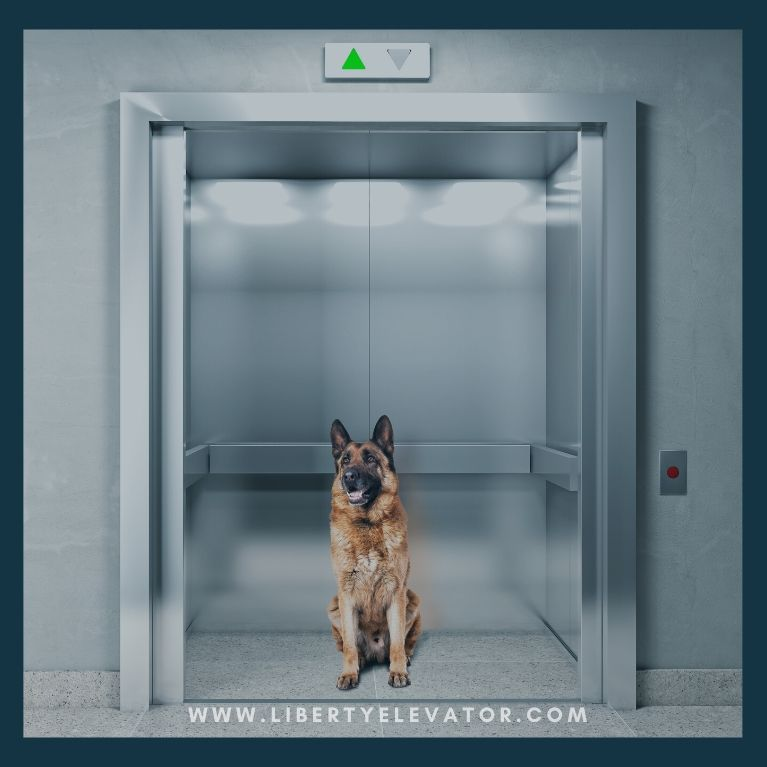 Technology that protects your elevator from virus spread